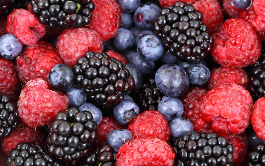 Top 10 Superfoods to Kickstart a Healthier Diet