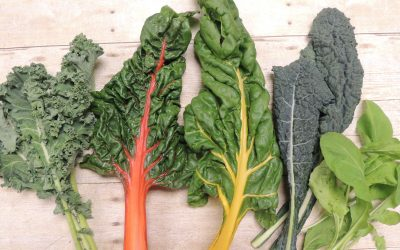 Top Anti Ageing Foods To Add To Your Daily Diet